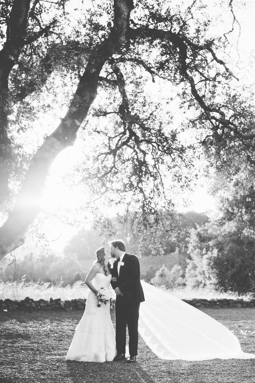 BA_Wedding_561