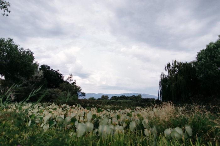 los-poblanos-historic-inn-albuquerque-spanish-ranch-wedding-inspiration-37