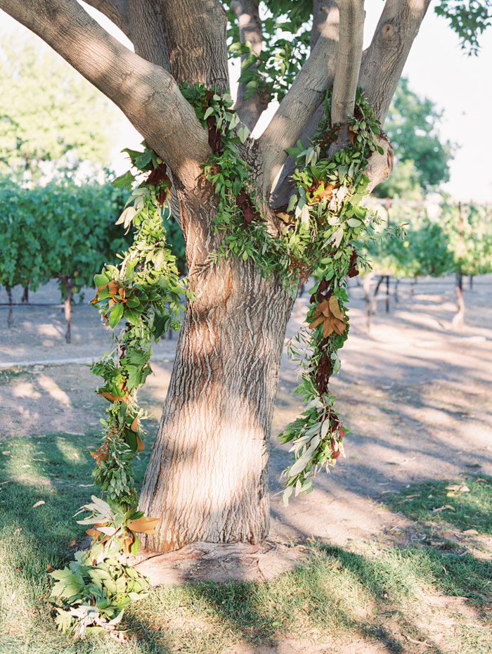 organic-vineyard-elopement-inspiration-shoot-29