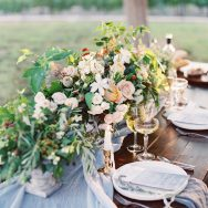 Organic Vineyard Inspiration Shoot