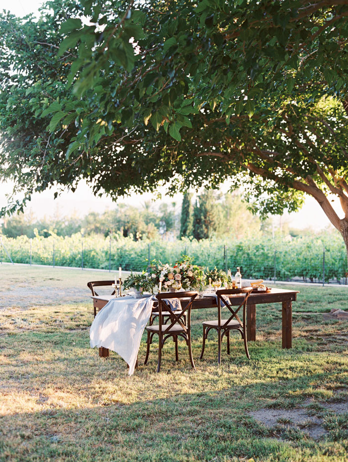 organic-vineyard-elopement-inspiration-shoot-39