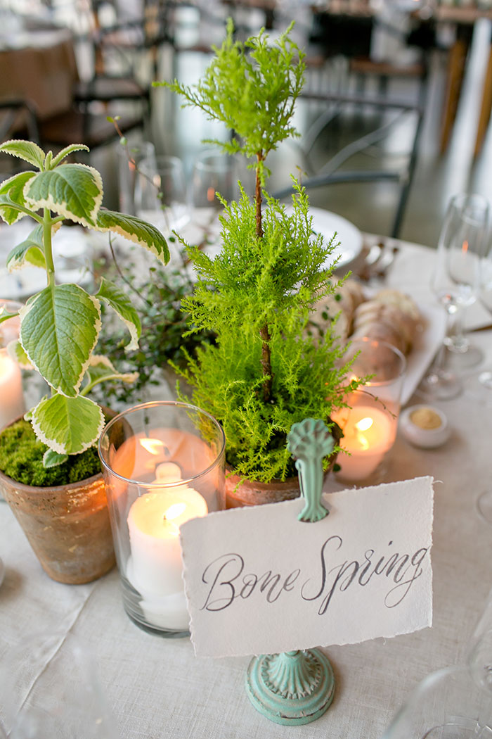 austin-texas-barr-mansion-vintage-green-geology-wedding-inspiration28