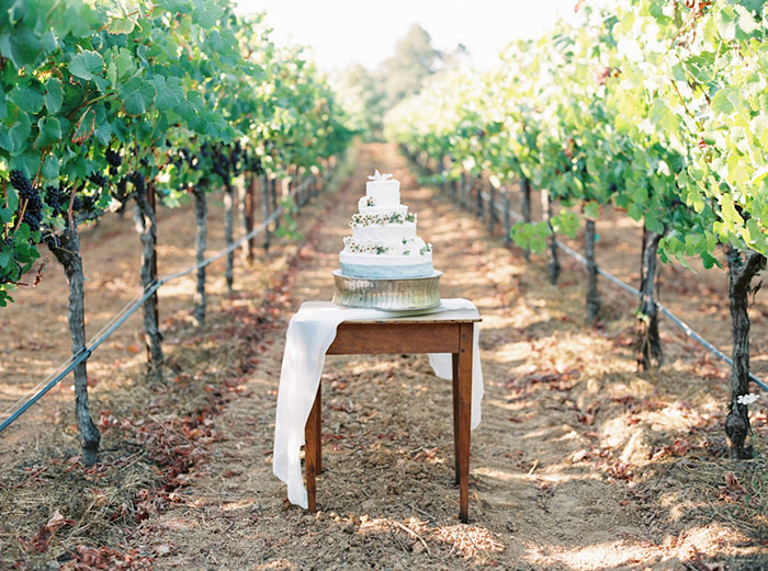northern-california-blue-organic-linen-calligraphy-vineyard-inspiration-shoot10
