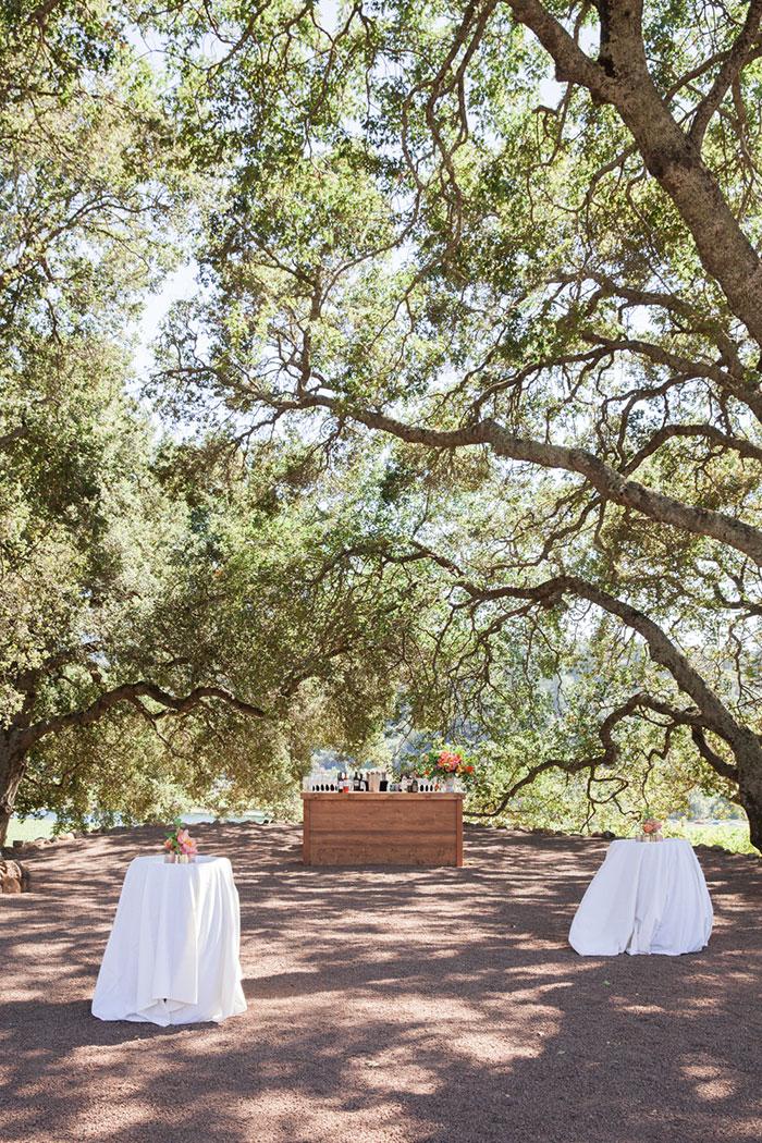 Liana and Adam's wedding at Kunde Family Winery