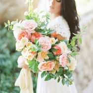 Coral Blooms on a desert Ranch inspiration
