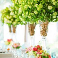 Chloe and Phillip's Lake Geneva Wedding