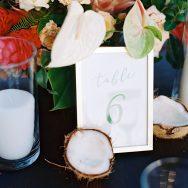 Katie and Cameron's wedding at Olowalu Plantation House