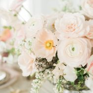 Fresh Blossom Inspiration Shoot