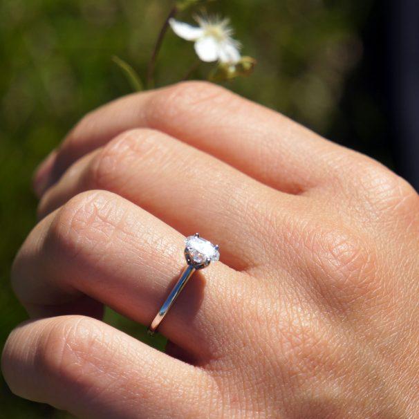 Mike & Jess Proposal Photo
